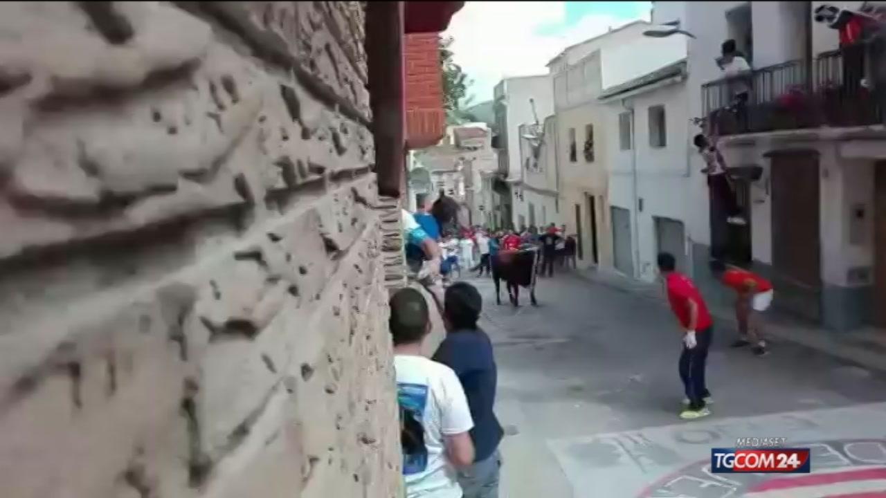 Video tgcom24 valencia momenti di panico c 39 un toro for Ultimi progetti di casa