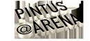 pintus-arena